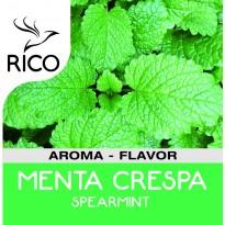 Aroma Menta Crespa